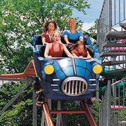 Wild Lightnin Roller Coaster