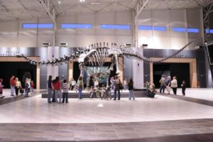 Tellus Science Museum